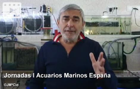 Jornadas I Acuarios Marinos España